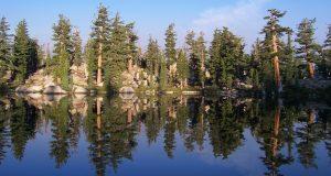 Grouse Lake - Mokelumne Wilderness